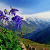 Йога-тур на Алтай: Любовь, Свобода и Осознанность